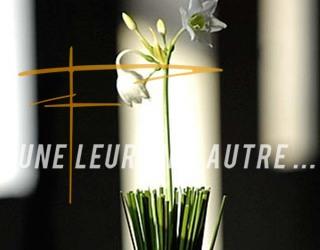 Une fleur, une autre - Création